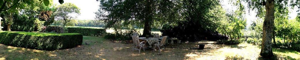 onder de beukeboom bij bed en breakfast vakantiehuisje molenbergh in zuidwest drenthe