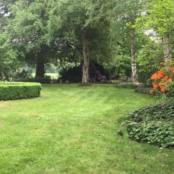 voortuin met azalea bij molenbergh vakantiehuisje zuidwest drenthe