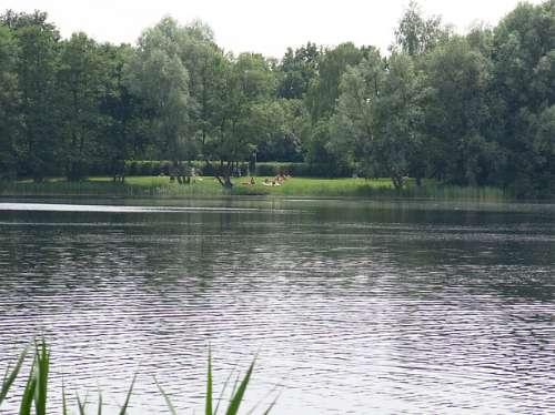 engelgaarde met zwem en viswater op 3 km afstand van molenbergh breakfast vakantiehuisje zuid west drenthe