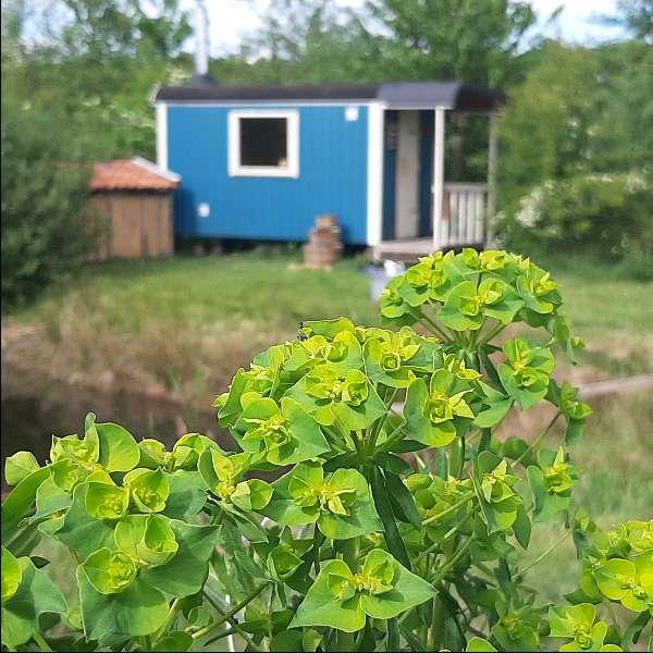 buitensauna bij yurt molenbergh drenthe