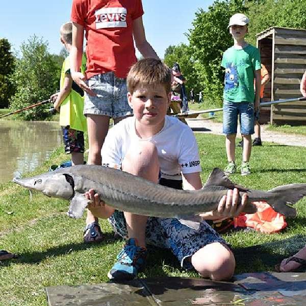 visvangen bij De Woldsteck 2 km vanaf Molenbergh vakantiehuisje Drenthe